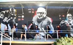 EIJ17 NFL USE 006
